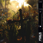EVERYTHING NOT SAVED WILL BE LOST - PART 22, FOALS, CD, 0190295394639