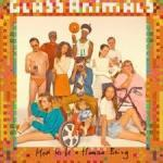 HOW TO BE A HUMAN BEING, GLASS ANIMALS, LP, 0602557001877