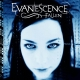 FALLEN -COLOURED-, EVANESCENCE, LP, 0888072097711