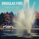 HINGES OF LUCK, DOUGLAS FIRS, CD, 8714374965033