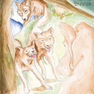 WOLF OF THE COSMOS -DOWNLOAD-, BONNIE PRINCE BILLY, LP, 0887828042012