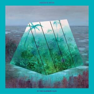 IN THE RAINBOW RAIN, OKKERVIL RIVER, LP, 5414940010626