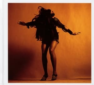 EVERYTHING YOU'VE.. -LTD-, LAST SHADOW PUPPETS, CD, 0887828037124