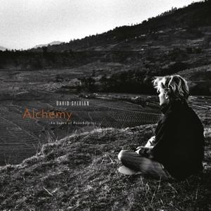 ALCHEMY  AN INDEX OF POSSIBILITIES, SYLVIAN, DAVID, LP, 0602567953333