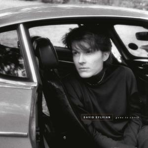 GONE TO EARTH, SYLVIAN, DAVID, LP, 0602567953371
