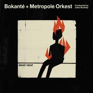 WHAT HEAT, BOKANTE & METROPOLE ORKEST & JULES, LP, 0884108007419