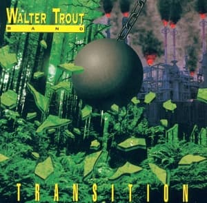 TRANSITION, TROUT, WALTER, CD, 8712399704422