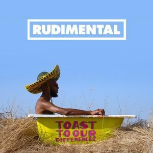 TOAST OUR DIFFERENCES, RUDIMENTAL, LP, 0190295612450