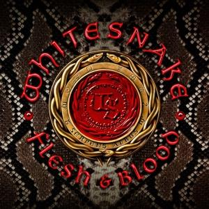 FLESH & BLOOD, WHITESNAKE, LP, 8024391095058