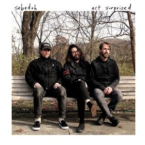 ACT SURPRISED, SEBADOH, CD, 0809236154729